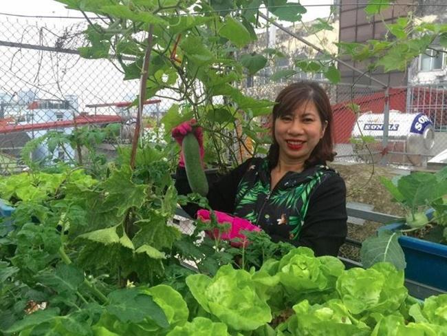Chị Quách Nhịp (Hà Nội) đang chăm sóc vườn rau của mình