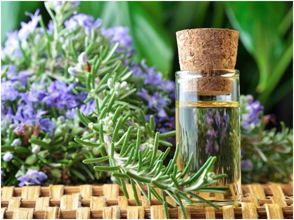 Các sản phẩm từ Hương thảo đều rất tốt cho sức khỏe