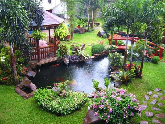 Mẫu vườn có hồ cá Koi