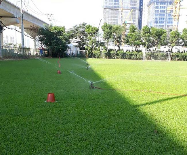 Cần duy trì độ ẩm cho đất