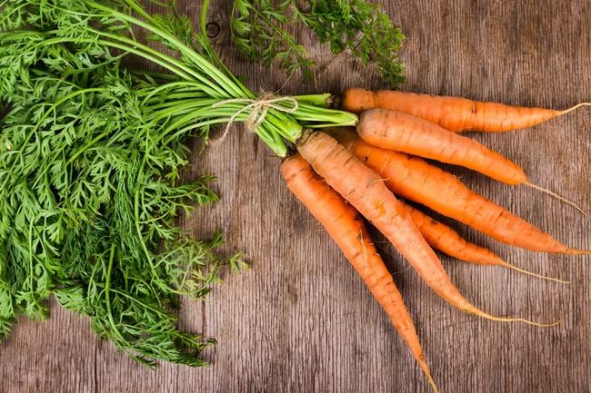 Trồng cà rốt trên sân thượng