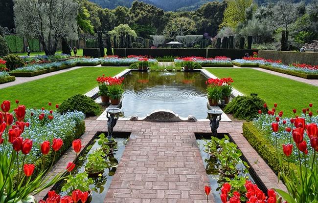 Khu vườn kiểu châu Âu hiện đại 1