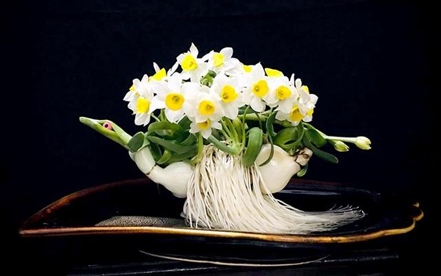 Hoa thủy tiên mang ý nghĩa gắn liền với tài lộc