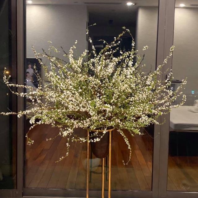 Hoa thường được cắm bình trang trí trong nhà