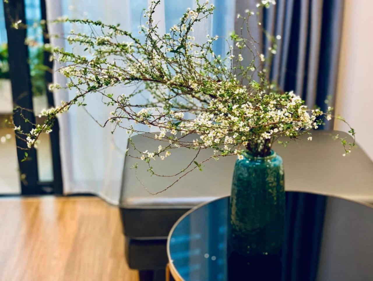 Hoa tuyết mai