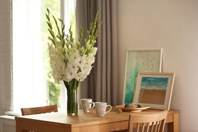 Cây hoa lay ơn thường được dùng để trang trí